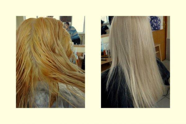 Можно Ли Тонировать Волосы Краской Эстель 101