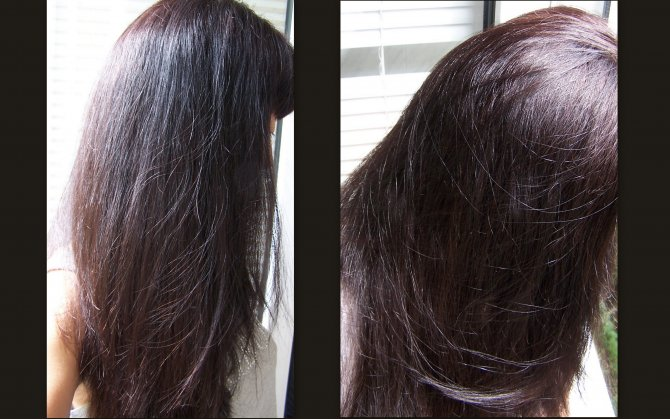 тёмный дуб цвет волос фото