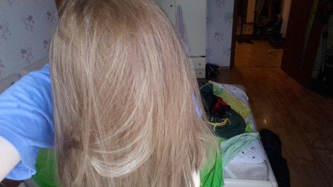 Как сделать из желтых волос пепельный цвет